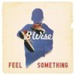 B Wise - Feel Something