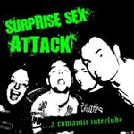 Surprise Sex Attack  - ...A Romantic Interlude