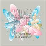 Various Artists - Buzzin' Fly Volume 2